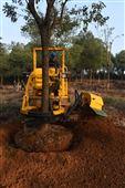 三普挖树机价格3wsl-1.6L链条式器树机