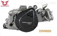 DSW500