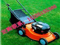 草坪机|电动草坪机|自走式草坪机|草坪修剪机