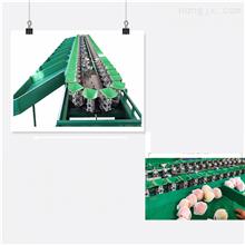 XGJ-SZ地瓜分级机红薯分选山东果蔬分拣设备