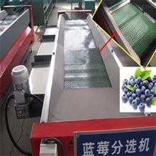 LMXGJ-2河南蓝莓选果机 直径分选的水果分选机