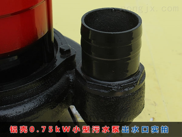 WQD8-12-0.75铝壳小型污水泵(750W铝壳普通污水泵)2寸出水口实拍