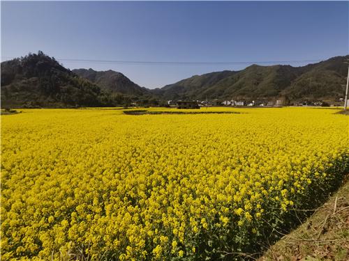 河北省关于恢复浙江博源农机有限公司相关产品农机购置补贴资格的通知