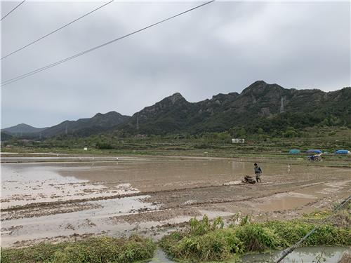 丘陵山区农田宜机化改造工作座谈会在京举办