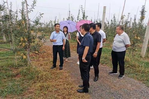 陕西长武县龙8中心赴彬观摩交流果园机械化防霜冻技术