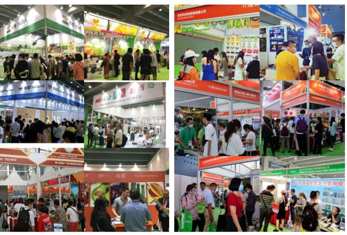 世界水果产业博览会精彩看点 | 江南市场将携众多进口水果缤纷亮相