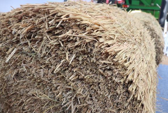 天津市农业农村委关于发布2项农业机械专项鉴定大纲的通告