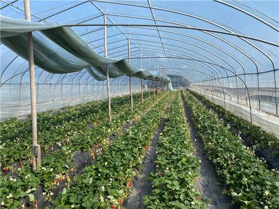 关于四川省2021年第三批农业机械购置补贴产品投档结果的公示