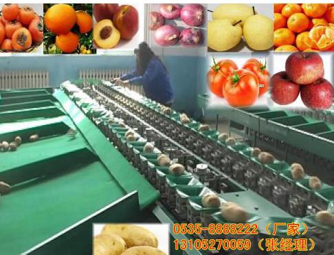 水果挑果机