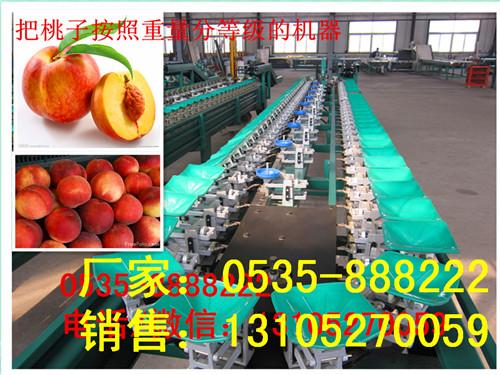 水蜜桃选果机
