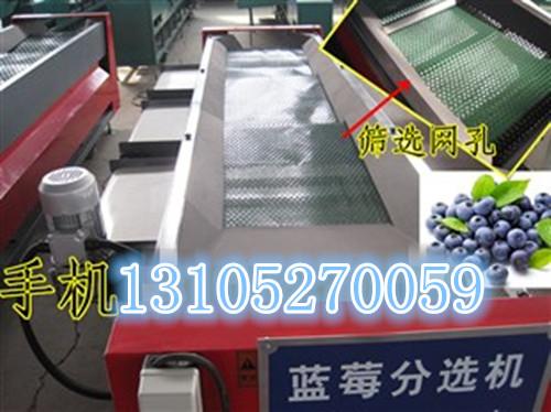 蓝莓选果机,16款新型蓝莓选果机